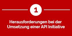 Herausforderungen bei der Umsetzung einer API Initiative